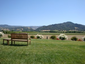 View from Stonestreet Winery in Alexander Valley