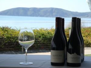2012 World of Pinot Noir