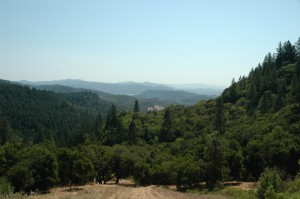 Howell Mountain