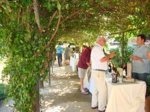 Mount Veeder Appellation Wine Tasting