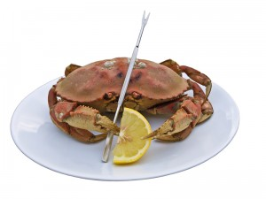 Dungeness Crab, ready to go