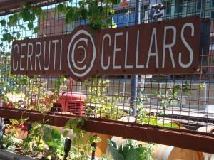 Cerruti Cellars