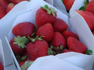 Strawberries at the Ukiah Farmers Market