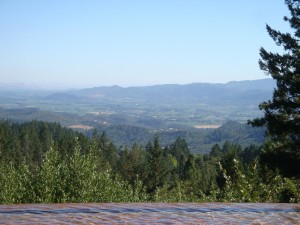 The view from CADE, up on Howell Mountain