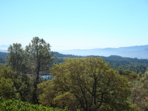 View from Robert Craig Winery, a 2018 Taste of Howell Mountain participant
