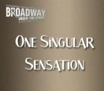Broadway Under the Stars One Singular Sensation