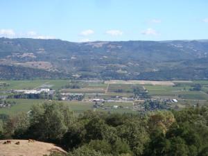 Upper Napa Valley