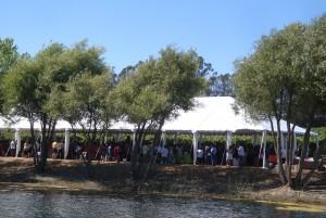 MAVA Harvest Festival