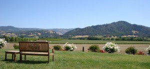 Stonestreet Winery View