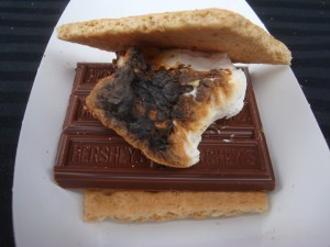 S'Mores you can make at 2015 Wine and Food Affair