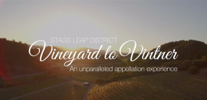 Vineyard to Vintner Video