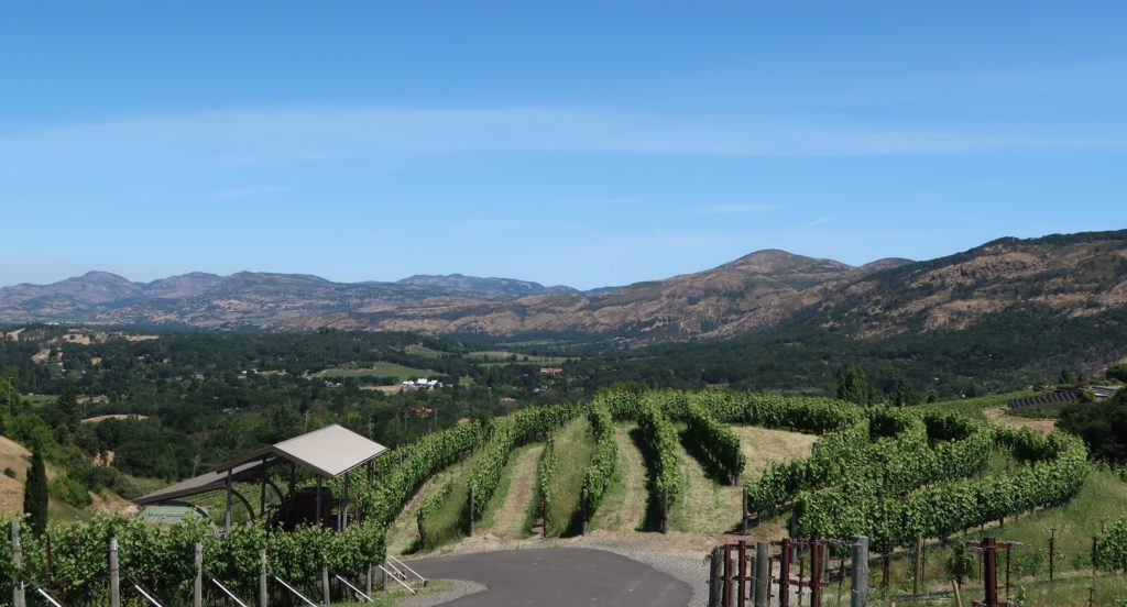 Napa Valley, as seen from Porter Family Vineyards